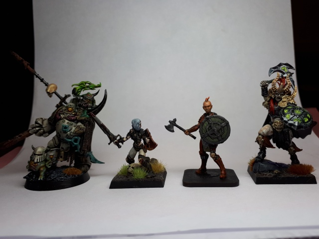 size comparison between GW Plague Marine, Hasslefree miniature, Shieldmaiden and DarkOath Warqueen