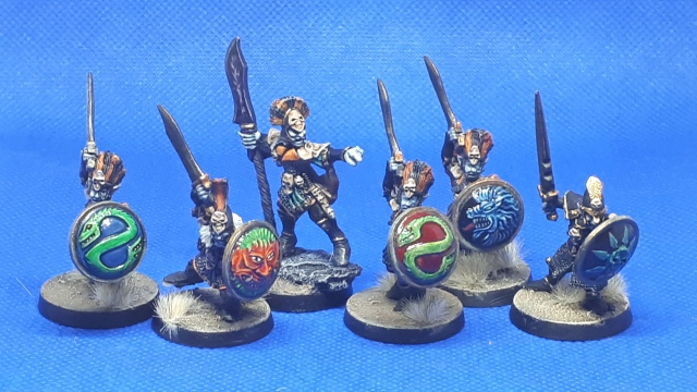 Marauder Dark Elf Regiment MMB3 Leader and warrior group shot