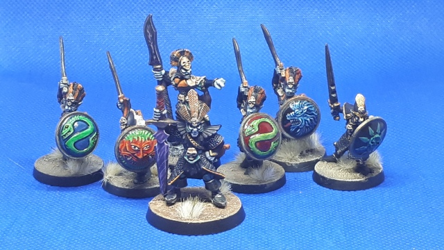 Marauder Dark Elf Warriors, Leader and Champion