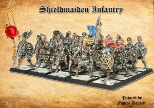 Shieldmaiden infantry block, shields and handweapons, painted